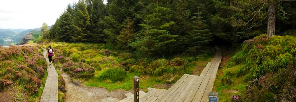 Panoramic Glendalough